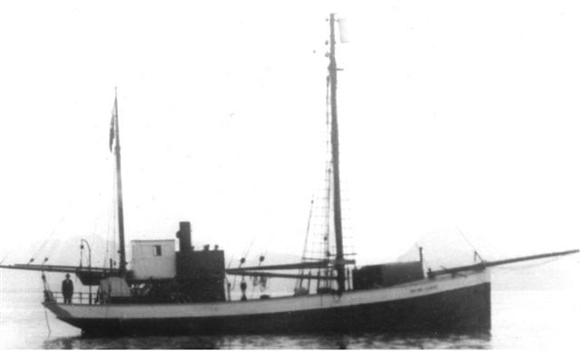 6-6 (Small)